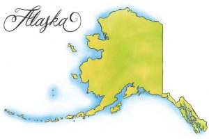 Alaska Senate election Voting Live