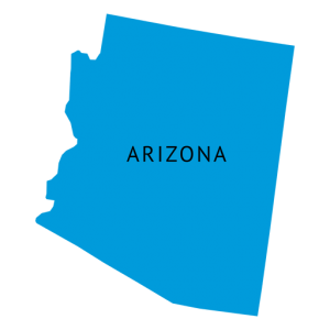 Arizona Senate election Voting Live