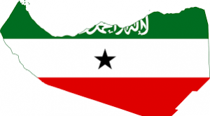 Somaliland parliamentary election Voting Live